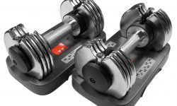 Bayou Fitness Adjustable Dumbbells 5-25 lb (Pair) Review