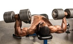 How To Build Shoulder Muscle with Dumbbells